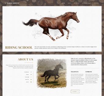 splash_home_horse